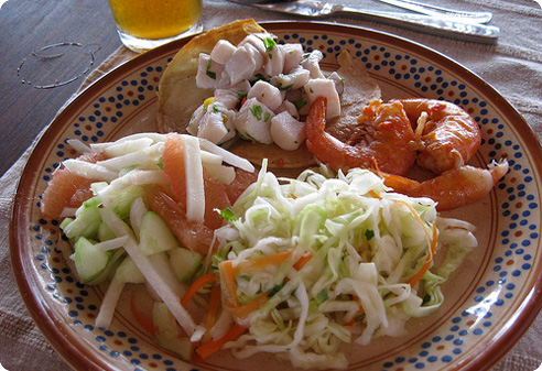 Shrimp Ceviche slaw and salad at Playa Viva