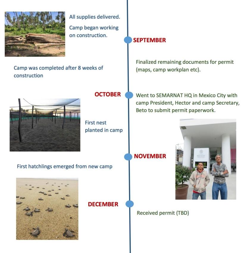 timeline-for-blog2.jpg